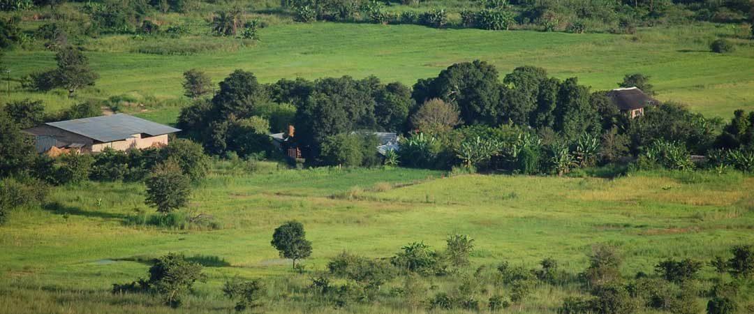 mpanga - Landwirtschaft in Mumau