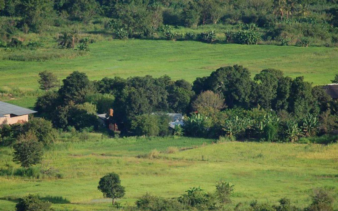 Übersicht Landschaft Mumau