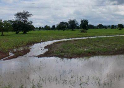 Fluss beim Feld